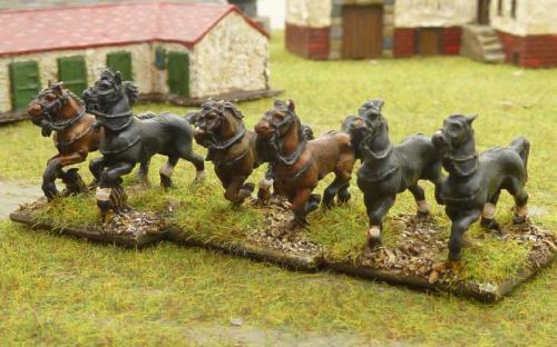 13 Spare horses