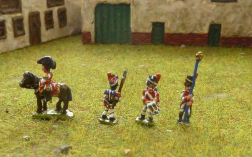 Napoleonic French Imperial Guard Dutch Grenadiers