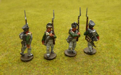 Napoleonic Russian line infantry (Perry miniatures)