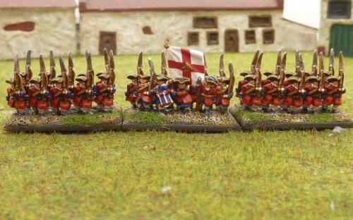 WSS Irish Brigade Dorrington Regiment
