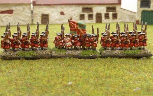 WSS Irish Brigade Fitzgerald Regiment
