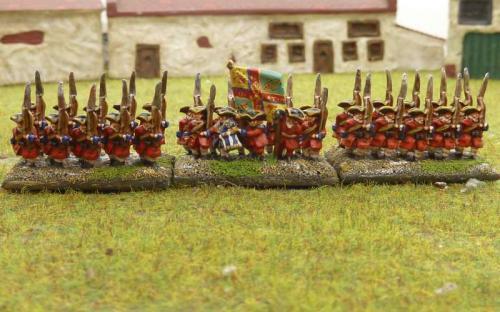 WSS Irish Brigade Galmoy Regiment